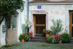 Germany: Regensburg / Bavaria (tisha_razumovsky) Tags: world street old autumn urban heritage history classic architecture germany garden outdoors bavaria town site warm europe quiet pavement walk sunny medieval september unesco patio journey historical typical dreamlike regensburg solitary exciting secluded bystreet