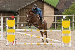 DSC06688_s (AndiP66) Tags: horse schweiz switzerland sony luzern september alpha concours pferd ch horsejumping wettbewerb springen 2015 f456 sursee sonyalpha springreiten kantonluzern cantonlucerne menznau andreaspeters ruswil buholz pferdespringen sony70400mm 77m2 vereinsspringen sal70400g2 sony70400mmf456gssmii a77ii ilca77m2 77ii 77markii slta77ii