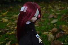 """They called you the Glue"" (Hoshiko-Pullip) Tags: autumn red doll wig bjd pullip obitsu stica"