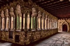 Claustre (Francesc Reina / freina) Tags: monument canon catalunya claustro lestany claustre moianes canon24105lis freina canon5dmarckii francescreina
