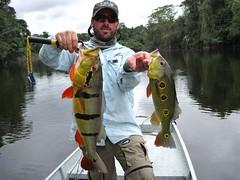 Amazonia 2012 (42)
