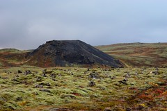 SONY DSC (oeiriks) Tags: mountain lava iceland moss highland oeiriks sonyalpha350 blskgabygg