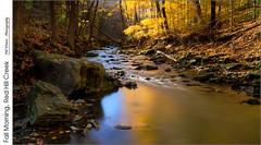 Fall Morning, Red Hill Creek (jwvraets) Tags: autumn fall leaves creek nikon stream hamilton gimp opensource niagaraescarpment nikkor1224mm redhillcreek d7100 rawtherapee