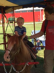 """Paul Rides a Pony with Daddy • <a style=""""font-size:0.8em;"""" href=""""http://www.flickr.com/photos/109120354@N07/22830620137/"""" target=""""_blank"""">View on Flickr</a>"""