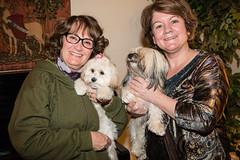 Laura and Pip and Julie and Jane (Laura Erickson) Tags: family people julie jane pip gillen savastio havanasilkdog thunderroadspip juliegillensavastio thunderroadhavanasilkdogs pipsmother