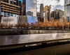 9.11 Memorial and Museum, NYC DSC05351 (nianci pan) Tags: nyc trees urban newyork building geometric leaves architecture modern buildings landscape leaf cityscape geometry manhattan line pan 911memorial 博物馆 纽约 曼哈顿 sonyalphadslr nianci sonyphotographing 记念碑 911museum