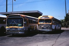 012RTD Di 6 Ocean Park 19800720 AKW (Metro Transportation Library and Archive) Tags: venice santamonica scrtd division6 alanweeks