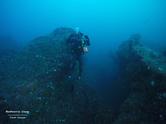 Belharra Canyon (YellowSingle 单黄) Tags: belharra diving scuba scaphandre plongée gopro atlantc ocean canyon exploration wave