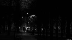 The walker (BenoitGEETS-Photography) Tags: bruxelles brussels marchédenoêl sony a6000 black noiretblanc nb bn bw zwart walker marcheur nuit night geets benoitgeets misterblue blackwhite