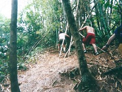 Hiking & Cliff Diving In The Rain Forest- Puerto Rico
