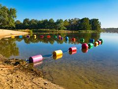 Colourful buoys (garydlum) Tags: belconnen lakeginninderra canberra buoys australiancapitalterritory australia au
