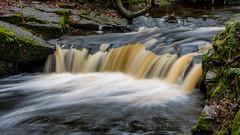 2017-01-17 Rivelin-7407.jpg (Elf Call) Tags: nikon rivelin river yorkshire water stream 18105 sheffield steppingstones waterfall d7200 blurred