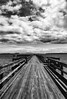 Between Sky and Sea (Natalia Medd) Tags: bw black white mono monochrome bridge sky clouds path pier walk sea ocean vancouver island outdoor people iphone texture blur birds contrast horizon moving forward