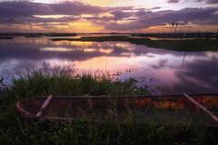 Closer (drivingback) Tags: pentaxks2 sigma1020mmf456 sunset landscape