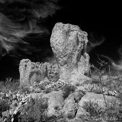 A walk among the rocks (claudiov958) Tags: arizona biancoenero blackwhite blancoynegro cactus černýabílý claudiovaldés czarnyibiały landscape mediumformat mediumformatcamera mediumformatdigital noiretblanc pentax645z pretoebranco rocks schwarzundweiss черноеибелое ngc pentaxart