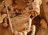 Trichy Ranganathaswamy Temple 133 (David OMalley) Tags: india indian tamil nadu subcontinent trichy sri ranganathaswamy temple srirangam thiruvarangam gopuram chola empire dynasty rajendra hindu hinduism unesco world heritage site ranganatha vishnu canon g7x mark ii canong7xmarkii powershot canonpowershotg7xmarkii g7xmarkii