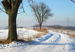 Above the city (stano.jas.malak) Tags: piešťany slovensko zima sneh winter snow slovakia