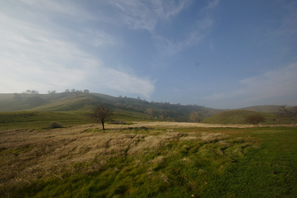 2017-01-31 Contra Loma Regional Park - Take 5 [#1]