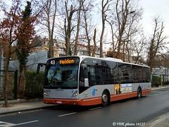 8216-16125§0 (VDKphotos) Tags: stib mivb vanhool vhnewa330 man autobus livrée06 l43 belgium bruxelles