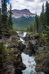 Athabasca Falls (m01229) Tags: d7200 jasper alberta canada ca icefieldsparkway