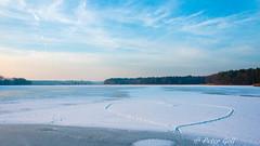 Love is in the lake (pego28) Tags: dechsendorf dechsendorfweiher natur winter herz heart eisfläche ice eis pond lake schnee snow nikon nikkor d800 franken bayern franconia germany german heimat homeland