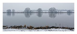 Wintermorgen an der Maas II
