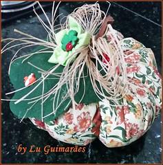 20150816_213058 (Artesanato com amor by Lu Guimaraes) Tags: artesanato fuxico decoração tecido enfeitecozinha