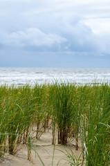 Weite (-BigM-) Tags: sea holland beach strand photography meer fotografie south north katwijk nordsee niederlande süd bigm
