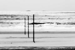 Believe ? (Cline Troffigu) Tags: noiretblanc flou loireatlantique formatpaysage