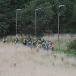 the spectators arrive