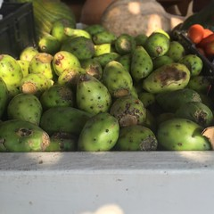 Freaking amazing prickly pears at a roadside stand. Also known as Tunas, they're subtly sweet and melt in your mouth like ice. The woman who owns the stand gave Savannah water and a ton of food too. #TheWorldWalk #texas #travel #twwphotos