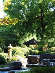 Japanese garden, botanical garden, Augsburg (M_Strasser) Tags: germany deutschland japanesegarden olympus botanicalgarden garten augsburg japanischergarten botanischergarten olympusomdem1