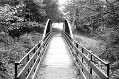 The Campground Bridge (bblhed) Tags: bw film geocaching kodak hiking letterboxing d76 girlscouts tmax400 watertown brownies nikonfa nikkor50mmf14 bluetrail homeprocessed mattatucktrail blackrockstatepark cfpa 64072 naugatuckrivervalley gc1b90j browniesmilecache wolverienscanner