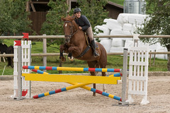 DSC07145_s (AndiP66) Tags: horse schweiz switzerland sony luzern september alpha concours pferd ch horsejumping wettbewerb springen 2015 f456 sursee sonyalpha springreiten kantonluzern cantonlucerne menznau andreaspeters ruswil buholz pferdespringen sony70400mm 77m2 vereinsspringen sal70400g2 sony70400mmf456gssmii a77ii ilca77m2 77ii 77markii slta77ii