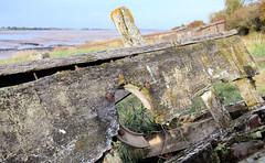 Severn Collier (R~P~M) Tags: uk greatbritain england abandoned river boat wooden ship unitedkingdom gloucestershire estuary severn hulk wreck derelict barge glos purton