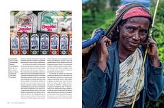 (Lucille Kanzawa) Tags: magazine revista article nuwaraeliya matria teapickers lucillekanzawa horizontegeogrfico revistahorizontegeogrfico editorahorizonte matriasobrechnosrilanka articleabouteapickersinsrilanka colhedorasdech colhedorasdechdosrilanka srilankasteapickers