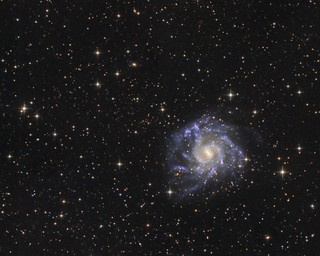 NGC7424 - a barred spiral galaxy in Grus