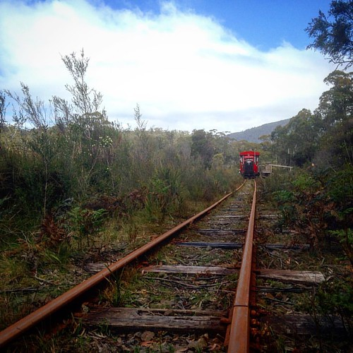 Cruising through the buttongrass in Tassie's far south. #farsouthmeet #farsouthtasmania #hobartandbeyond #huontrail @hobartandbeyond @farsouthtasmania @lovetastours #instatassie #tasmania