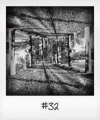 """#DailyPolaroid of 30-10-15 #32 • <a style=""""font-size:0.8em;"""" href=""""http://www.flickr.com/photos/47939785@N05/23082482069/"""" target=""""_blank"""">View on Flickr</a>"""