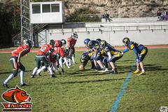 LMFA - Wildcats 24 - Jabatos 20