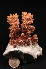 Copper (Ivan_p_) Tags: crystals science chemistry minerals copper plating dendrites