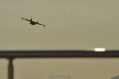 Plane and bird (Ed.ward) Tags: holiday bird plane turkey apartment flat aeroplane seaplane olivetree 2015 bodrumpeninsula theolivetree gulluk patsapartment nikond700 nikonafzoomnikkor80200mmf28ed