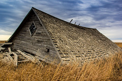 _MG_7948 (begineerphotos) Tags: wood old calgary abandoned field barn boards board alberta fallen oldbarn barnboard friendlychallenges