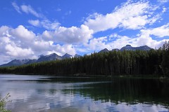 Forest Edge (Patricia Henschen) Tags: afternoon clouds cloudy boreal forest lake lac herbert banff banffnationalpark nationalpark parkscanada parks parcs mountains mountain rockymountains rockies rocky northern canadian canada canadianrockies reflection reflections water lakelouise alberta icefieldsparkway bowrange
