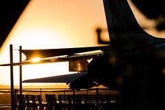 USS Midway (PauloRossi) Tags: california estadosunidos sandiego usa carrier airplane airshow ussmidway uss sunset sun sky dusk sea military aircraft wings navy airforce marines unitedstatesofamerica