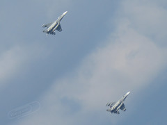 Su-30MKII (Mark V.I) Tags: canon canonpowershotsx700hs powershot sx700hs fav favb fuerzaaerea venezuela venezuelan airforce aircraft practica practice desfile parade military militaria camo jet jets fighter caza cazas su30 su30mkii sukhoi favclubfotografia