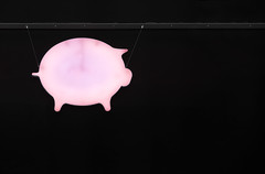 Glücksschwein (_LABEL_3) Tags: tiere schwein animals pig