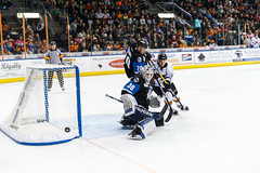 "Missouri Mavericks vs. Wichita Thunder, January 7, 2017, Silverstein Eye Centers Arena, Independence, Missouri.  Photo: John Howe / Howe Creative Photography • <a style=""font-size:0.8em;"" href=""http://www.flickr.com/photos/134016632@N02/31872459630/"" target=""_blank"">View on Flickr</a>"