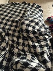 (nccmrm97) Tags: blanket hiding feline cat animals 2016 december