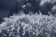 Winter Bling-Bling (fotoRschaffer) Tags: switzerland emmental cold frozen groundfrost rime wintertime sunlight macro sparkle icecrystals jewels snow frosty blingbling myswitzerland